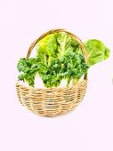 Fresh  Baby Bok Choy And Cos Salad In Ratten Basket Isolated On White Background