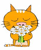 picture of happy birthday  - cartooney red cat holding bouquet of camomiles - JPG
