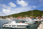 Boats in Gustavia marina with colorful houses at the background, St. Barths, French West Indies