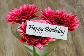 picture of gerbera daisy  - Happy Birthday card with pink gerbera daisies in martini glass - JPG