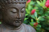 Buddha face in garden