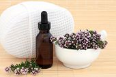 Thyme herb and flowers used in naturopathic herbal medicine with aromatherapy essential oil bottle.