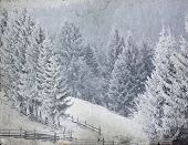 Vintage photo of winter landscape with snowy fir trees