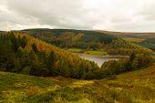 Autumn Over To Derwent Valley
