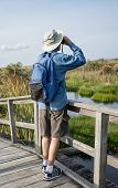 Man Birdwatching In Florida Wetlands on Old Foot Bridge