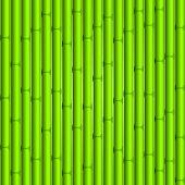 stock photo of stockade  - Bamboo background - JPG
