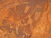Rock engravings of African wildlife subjects, Twyfelfontein archaeological site, Namibia, southern Africa