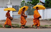 Buddhist monks with umbrella walking on street
