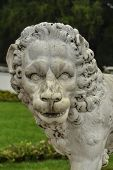Marble Lion Statue Of Arkhangelskoye Palace