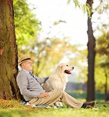 Senior gentleman and his Labrador retriever dog sitting on ground in a park, shot with a tilt and shift lens