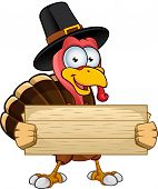 image of poultry  - A cartoon illustration of a Thanksgiving Turkey character - JPG