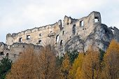 foto of yellow castle  - Ruins of Lietava castle with autumn yellow trees - JPG