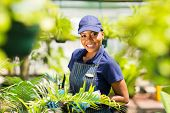 portrait of young afro american nursery worker gardening