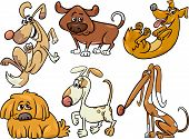 picture of spotted dog  - Cartoon Illustration of Funny Dogs or Puppies Pets Set - JPG