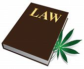 stock photo of marijuana leaf  - Law on the legalization of marijuana cannabis plant book - JPG