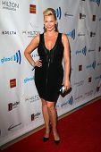 LOS ANGELES - APR 12:  Natasha Henstridge at the GLAAD Media Awards at Beverly Hilton Hotel on April
