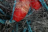 Fishing Net, Close-up, 1