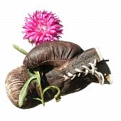 Boxing Glove With Flower Isolated On White Background.