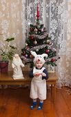 picture of rabbit year  - the boy in a suit of a rabbit costs near a New Year tree and waits gifts - JPG