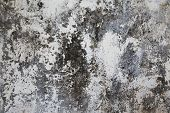 Old Plastered Surface White And Gray
