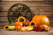 stock photo of gourds  - Thanksgiving autumnal still life with old wooden wheel - JPG