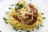 Parmigiana Meal