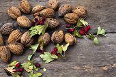 Autumn harvest - walnuts and hawthorn