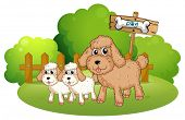 Illustration of the cute dogs near the signboard on a white background