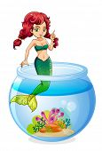 Illustration of a mermaid inside the aquarium on a white background
