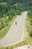 picture of nordic skiing  - a man skiing with roller ski on a mountain road - JPG