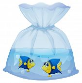 Illustration of a plastic bag with two fishes on a white background