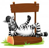 Illustration of a zebra under the empty signboard on a white background