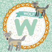 Abc Animals W Is Wolf. Childrens English Alphabet. Vector