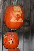 LOS ANGELES - OCT 4:  Bryan Cranston Carved Pumpkin at the RISE of the Jack O'Lanterns at Descanso Gardens on October 4, 2014 in La Canada Flintridge, CA