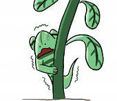 cartoon animal emotion lizard hide