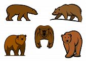 Brown wild bear characters