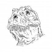 vector - contour head dinosaur isolated on background