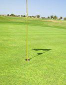 Nahaufnahme des eine Golfanlage grün