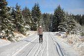 Man In Ski Track In Forest