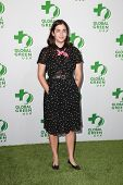 LOS ANGELES - FEB 18:  Alanna Masterson at the Global Green USA's 12th Annual Pre-Oscar Party at a Avalon on February 18, 2015 in Los Angeles, CA