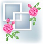 Photo Frame And Roses