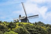 Windmill in San Francisco