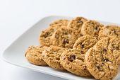 foto of baked raisin cookies  - 3 rows of delicious raisin cookies in white rectangular plate - JPG