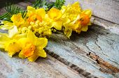 foto of jonquils  - Easter time spring flowers and cup of tea on the old wooden table - JPG