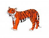 Red cartoon tiger. Vector isolated animal.