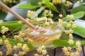 stock photo of linden-tree  - Bowl of fresh and delicious honey with linden flowers  - JPG