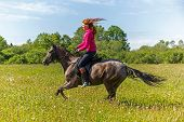 image of horse girl  - Beautiful redhead girl riding horse in summer day  - JPG