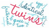 stock photo of zygote  - Twins word cloud on a white background - JPG