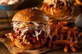 foto of pulling  - Homemade Pulled Chicken Sandwich with Coleslaw and Fries - JPG