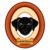 foto of bird-dog  - Black Labrador Retriever dog portrait in cherry wood mat frame - JPG